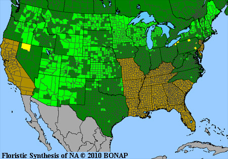 Range Map For Toxicodendron Rydbergii